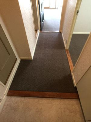 内装玄関廊下 壁紙、カーペット